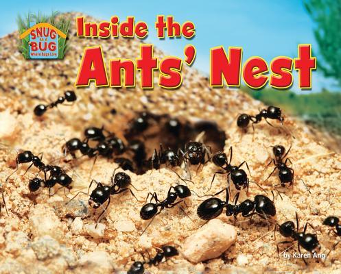 Inside the Ants' Nest By Ang, Karen